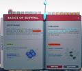 BasicsOfSurvivalPage3.png