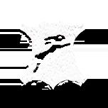 GameIcon-RabbitSkin.png