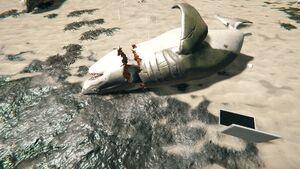 Shark-head-the-forest-1-0-dirty (1).jpg