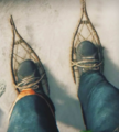Snowshoes firstview.png