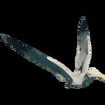 SeagullFarket.png