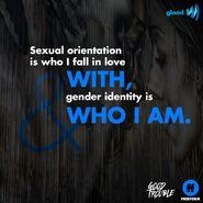 Orientation vs Identity