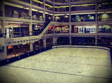 Arena1104.jpg