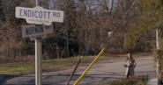 Endicott Road
