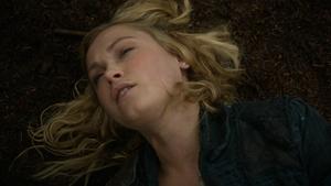 The Calm 031 (Clarke)