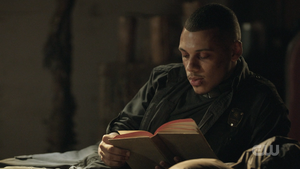 509 Shaw reading a book