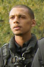 Miles Shaw