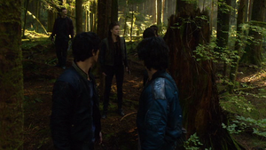 His Sister's Keeper 046 (Bellamy and Finn)