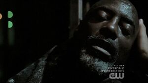 The 100 Red Queen - Jaha