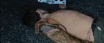 FileD7 male killed by Thresh