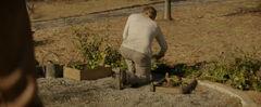 Peeta plantando Primulas.jpg