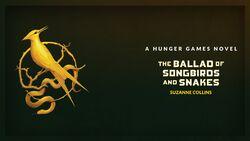 A Hunger Games Novel.jpg