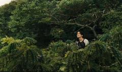 Katniss sobre los arboles en la arena de los 75° Juegos del Hambre.png