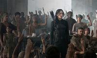 Katniss-districtsign