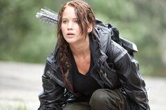 Katniss en la arena de los 74°.jpg