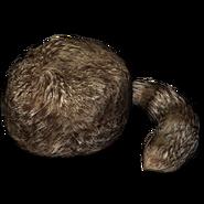 Trapper hat 256