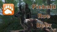 Piebald Roe Deer Buck theHunter 2016