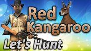 TheHunter Let's Hunt RED KANGAROO