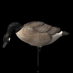 Decoy goose feeder 256.png