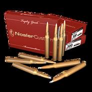 Cartridges 300 256