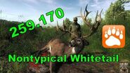 Huge Nontypical Whitetail Buck theHunter 2016