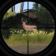 2-6x24mm scope 2