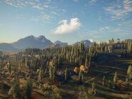 Balmont Landscape
