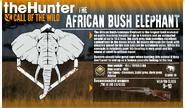 COTW Elephant fact file.