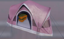 Tent pink.jpg