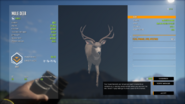 TheHunter Call of the Wild 12 2 2020 10 11 34 PM