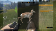 TheHunter Call of the Wild 11 27 2020 10 37 54 AM