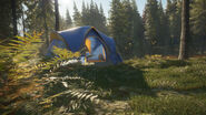 TentsGroundblindsPromo2