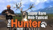 TheHunter Classic - Super Rare Non-Typical Whitetail