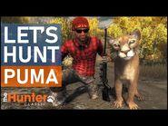 Let's Hunt PUMA - theHunter Classic