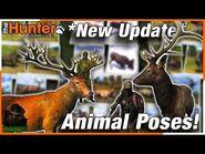 Trophy Shot Animal Poses Tutorial + Whitetail, Roosevelt Elk, & Red Deer Hunting! theHunter Classic