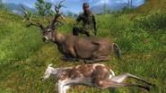 Killerpeterjr223 rares 1
