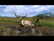 Super Rare Whitetail Deer TheHunter Classic