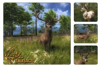 Whitetail Deer The Hunter Wikia Fandom