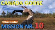 TheHunter_Canada_Goose_Mission_10
