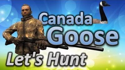 TheHunter_Let's_Hunt_CANADA_GOOSE