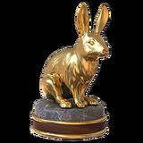 European rabbit gold