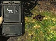 Huntermate droppings mulede