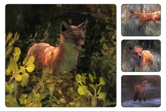 Red Fox The Hunter Wikia Fandom
