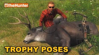 TheHunter_★_TROPHY_POSES_and_Camera_Filters