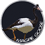 Magpie goose badge.png