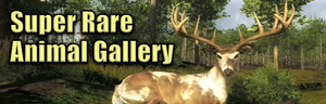 Super rare animal gallery.png