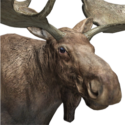 Animal Weights The Hunter Wikia Fandom