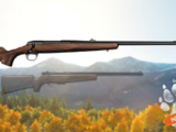 .243 Bolt Action Rifle (Wood)