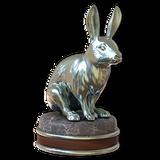 European rabbit silver