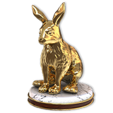 Snowshoe hare gold